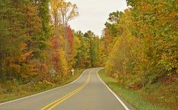 droga przyrody Obraz Royalty Free