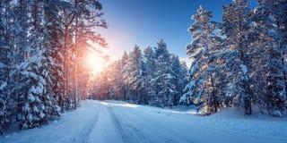 Droga w śnieżnej zimie na pięknym słonecznym dniu Obraz Stock
