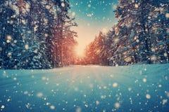 Droga w śnieżnej zimie na pięknym słonecznym dniu Obraz Royalty Free
