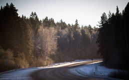 Droga w śnieżnym lesie Zdjęcia Stock