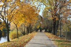 Droga w jesień parku blisko jeziora obraz stock
