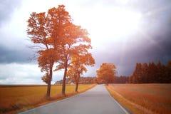 Droga w jesieni Obrazy Royalty Free