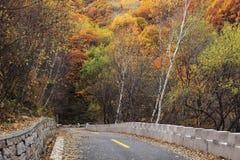 Droga w jesieni Zdjęcia Stock