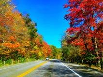 Droga w jesieni w Connecticut zdjęcia stock