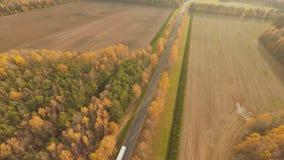 Droga w jesieni lasowym widok z lotu ptaka z przelotną ciężarówką Rosja zbiory wideo