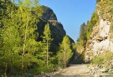 Droga w Kaukaz Zdjęcia Stock