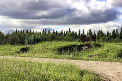 Droga w lesie Obraz Royalty Free