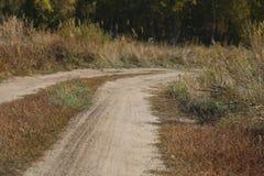 Droga w lesie prowadzi ja, zakończenie ilustracja wektor