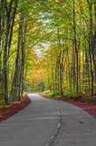 Droga w lesie w jesieni Obrazy Royalty Free