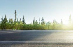 Droga w północnym halnym lesie Obraz Royalty Free