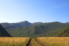 Droga w pogórzach Altai Fotografia Stock