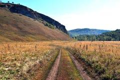 Droga w polu Fotografia Stock