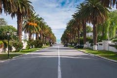 Droga w przedmieściach prowadzi morze wśród palm, Tunis Zdjęcia Royalty Free