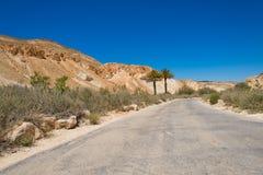 Droga w pustynia negew z dwa palmami Zdjęcie Stock
