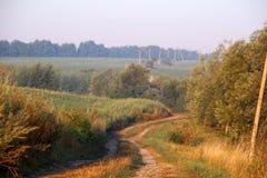 Droga w ranku słońcu Zdjęcie Royalty Free