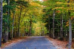 Droga w spadek w Michigan kolorowych drzewach Obrazy Royalty Free