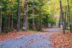 Droga w spadek w Michigan kolorowych drzewach Zdjęcie Stock