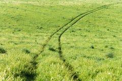 Droga w trawie zdjęcia stock