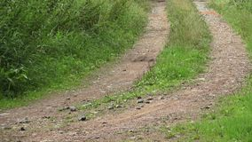 Droga w wsi Długa i cewienie wiejska ścieżka zbiory