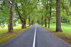 Droga w wsi, Latvia Zdjęcie Stock