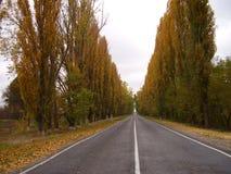 Droga w zima Obraz Stock