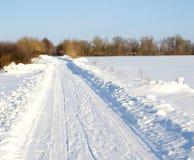 Droga w zima lesie Fotografia Royalty Free