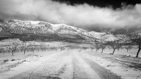 Droga w zima ranku Zdjęcia Royalty Free