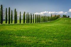 Droga z cyprysami agritourism w Tuscany Obraz Royalty Free
