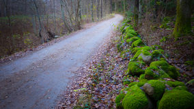 Droga z kamienia ogrodzeniem Obrazy Stock