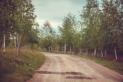 Droga z tunelem drzewa Zdjęcie Royalty Free
