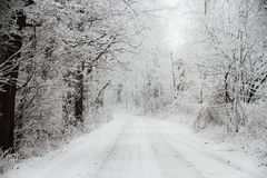 droga zakrywający śnieg Fotografia Royalty Free