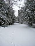droga zakrywający śnieg Obrazy Stock