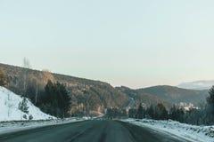 Droga znika za pięknym jałowcowym drzewem w pogodnym i mroźnym zima krajobrazie obraz stock