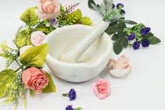 Drogas do moedor do almofariz para o farmacêutico Imagem de Stock
