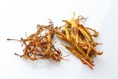 Drogas ervais secadas de China no fundo branco imagens de stock royalty free