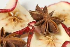 Droge appelen met anijsplant Royalty-vrije Stock Foto's
