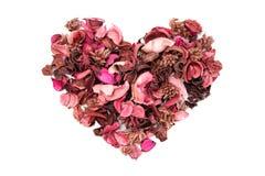 Droge aromatische bloemen Stock Foto's
