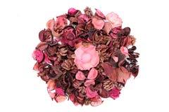 Droge aromatische bloemen Royalty-vrije Stock Afbeelding