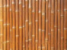 Droge bamboeomheining Stock Afbeeldingen