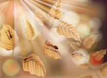 Droge Blad en Mieren op Aardachtergrond vector illustratie