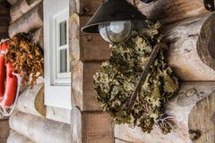 Droge bladeren Stock Afbeelding