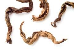 Droge bladeren van zwarte thee Royalty-vrije Stock Foto