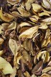 Droge bloemblaadjes Stock Foto