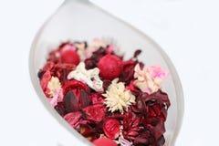 Droge bloemen Royalty-vrije Stock Foto