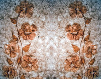 Droge bloemen als achtergrond Stock Fotografie