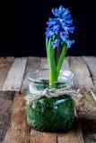 Droge bloemen in een glasvaas op een oude houten lijst royalty-vrije stock foto
