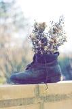 Droge bloemen in een laars Stock Afbeeldingen