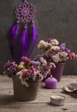 Droge bloemen en Purpere droomvanger Royalty-vrije Stock Fotografie