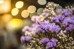 Droge bloemen met lichten bokeh achtergrond royalty-vrije stock afbeeldingen