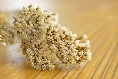 Droge bloemen op houten lijst Royalty-vrije Stock Foto's